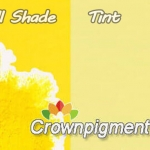 pigment for ink pigment yellow 3 Fast Yellow 10G 20308